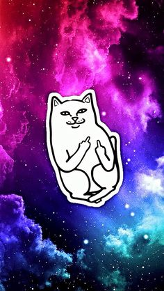 Ripndip iphone wallpaper #ripndip #middle #finger #cat #wallpaper #iphone #galaxy | Expression ...