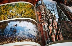 Die CEWE Fotobücher von Foto.at www.foto.at sind einfach nur Klasse und empfehlenswert! #fotoat #fotobuch #fotoalbum