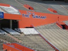 This is the Swamp