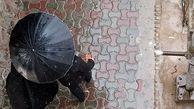 هشدار در مورد وقوع سیل در روز 13 فروردین   آغاز بارش در 12 استان کشور از امروز