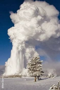 Old Faithful Erupting, Winter in Yellowstone National Park, Wyoming