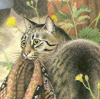 The Patchwork Cat written by William Mayne and illustrated by Nicola Bayley