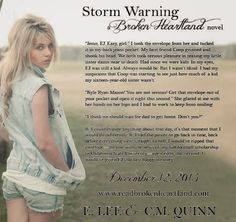 FicWishes: TEASER - Storm Warning by E. Lee and C. M. Quinn