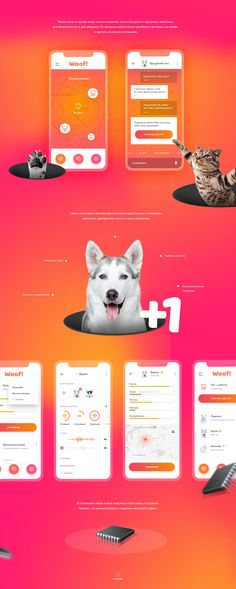 Woof - Chat for animals on Behance