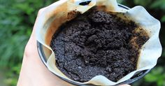 Stop throwing out coffee grounds. Here are 10 clever reasons why they'll forever change the way you plant