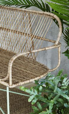 Bring the outdoors in with the indoor rattan Miroco Rattan Bench.