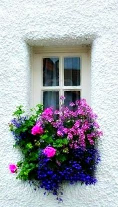 ~ beautiful window box ~