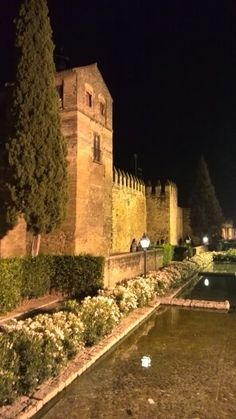 Estanques de La Muralla #CordobaESP www.bodegasmezquita.com