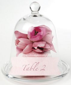 Romantic Glass Cloche Table Number With Pink Flower By Georgica Pond - Mel H - Weddbook Beauty And The Beast Theme, Beauty And Beast Wedding, Magical Wedding, Dream Wedding, Spring Wedding, Wedding Centerpieces, Wedding Decorations, Centrepieces, Wedding Favors
