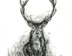 """Check out new work on my @Behance portfolio: """"""""Scribble Deer Series"""" ink & watercolour on paper"""" http://be.net/gallery/46886755/Scribble-Deer-Series-ink-watercolour-on-paper"""