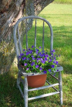 Garden decoration with old chairs and colorful flowers Flower Planters, Garden Planters, Garden Art, Chair Planter, Deco Nature, Old Chairs, Swing Chairs, High Chairs, Desk Chairs