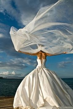 @Katie Kicklighter-  This is what your veil looked like during your wedding ceremony-- only smaller, of course! :-)