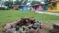Bird, Outdoor Decor, Home Decor, Garden, Homemade Home Decor, Birds, Interior Design, Home Interiors, Decoration Home