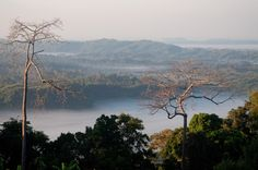 Sajek is a union at Baghaichari Upazila in Rangamati districts.  Basically it is name of a river which separates Bangladesh from India. The river flows into the Karnafuli River in the Chittagong Hill Tracts. Sajek Valley is situated in the North angle of Rangamati, near the Mizoram border boundary area. The valley is 18000 ft high form sea lavel. Many small rivers flow through the hills among them Kachalon and Machalong are famous. It is one of the biggest union in Bangladesh.