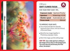 44 tips cards for photographers to cut out and keep or browse on your phone! Digital Camera Magazine, Photography Tips, Nature Photography, Camera Aperture, Camera Hacks, Camera Tips, Camera World, Out Of Focus, Cards