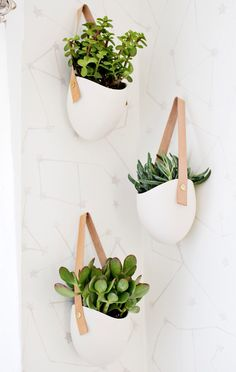 Green bathroom plants 30 Inspiring Hanging Plants Ideas for Bathroom Bathroom Plants, Bathroom Spa, Bathroom Toilets, Small Bathroom, Bathroom Ideas, Bathroom Green, Bathroom Designs, Downstairs Bathroom, Master Bathroom