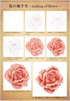 人物の心情を表したいときや、背景のポイントとして花を描きたいなと思ったことはありませんか?今回は、モチーフにもよく使われる「薔薇(バラ)」の描き方をご紹介します。見た目はとても美しいですが、描こうとするとハードルが高そうですよね。でも、実は順を追って描けばとっても簡単です。ぜひ実際に描いてみてくださいね♪