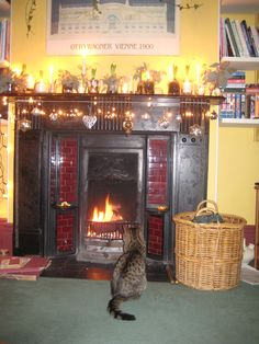The Living Room Mantelpiece 2008. Simple theme- white hyacinths, candles and glass- cat approval!