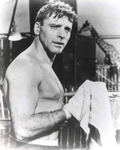 old movie stars photos Burt Lancaster Vintage Movie Stars, Old Movie Stars, Classic Movie Stars, Classic Movies, Vintage Movies, Vintage Men, Old Hollywood Movies, Hollywood Icons, Hollywood Stars