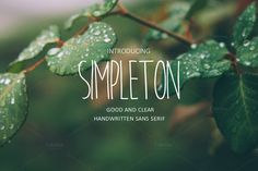 SIMPLETON {INTRO 35% OFF} by MediaLab on Creative Market