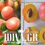 Τι χρειάζεσαι το Botox όταν έχεις μπανάνες στο ψυγείο σου; Η συνταγή που θα σου «λύσει» τα χέρια! -idiva.gr Fruit