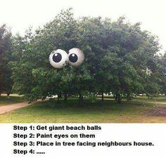 Outdoors prank