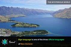 #newzealand #languages #facts