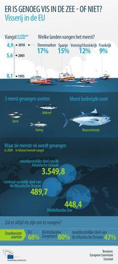 """""""Strijd tegen overbevissing is in het voordeel van vissers"""""""