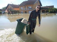 A girl saves a golden retriever from floods... in a trash can. Innovative and caring.