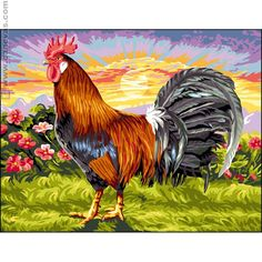 Rooster...