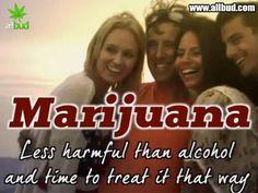 Marijuana less harmful than alcohol and time to treat it that way! #allbud #marijuana #cannabis #weed #use #medicalmarijuana #medical #legalization #legalizemarijuana #enjoy #healthy #life