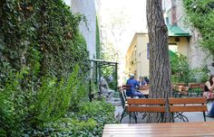 14 of Vienna's most beautiful hidden restaurant and café gardens to escape to in summer Lokal, Porch Swing, Outdoor Furniture, Outdoor Decor, Mineral, Most Beautiful, Restaurants, Wine, Adventure