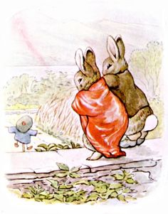 'The tale of Benjamin Bunny' by Beatrix Potter. Published 1904 by Frederick Warne & Co. Beatrix Potter Illustrations, Book Illustrations, Beatrice Potter, Peter Rabbit And Friends, Benjamin Bunny, Children's Literature, Childrens Books, Illustrators, Drawings
