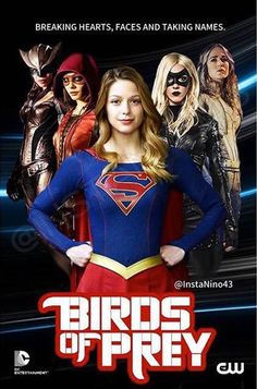 Hawkgirl, Speedy, Supergirl, Black Canary, & White Canary; The Women of DC TV Universe