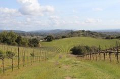 5 wine-country day trips in Northern California