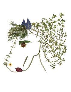 Depuis que je vis à Saratoga Springs, New York, célèbre pour sa saison de course de cheval, je ne pouvais pas résister à ce qui rend ce cheval hors de plantes pressées pour célébrer ma ville. Cette carte est une copie d'une pièce originale de l'art des fleurs pressées, fabriqué à partir de plantes que j'ai grandi dans mon jardin dans l'état de New York, cueillies et pressées cueillies à la hauteur de la couleur et puis pressé pendant plusieurs semaines. Une fois sec, j'ai disposé les plantes…