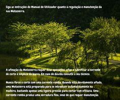 CUIDADOS A TER COM MOTOSSERRAS Cuidado nº 19  #motosserra #oleomac #oleomacportugal #lusomotos #cuidados #dicas #corte