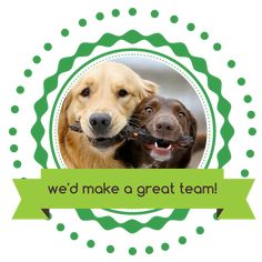 I am growing my pawTree team and I want *YOU* on it! Send me a message to learn more! Pet Quotes, Animal Quotes, Great Team, Cat Grooming, Pet Stuff, I Want You, Pet Care, Dog Cat, Pets