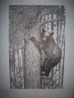 Black Bear in Tree Pen & Ink Print