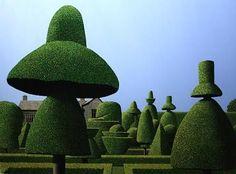 Michael Kidd - The Mad Hatter's Garden Cool Landscapes, Landscape Paintings, Landscape Art, Love Garden, Garden Art, Green Landscape, Contemporary Landscape, Fantastic Art, Simple Art