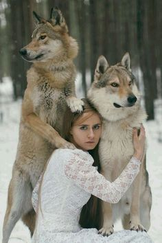 A Lady and her direwolves