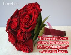 Wedding florist in Toronto. Bridal bouquets, corsages and breathtaking floral room decorations all customized wedding flowers in Toronto. Floral Quotes, Floral Room, Toronto Wedding, Corsage, Flower Decorations, Red Roses, Floral Arrangements, Wedding Flowers, Wedding Inspiration