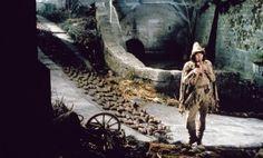 72 best shrek tastic images on pinterest musicals - Anne de shrek ...