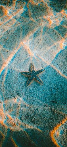 iPhoneXpapers.com | iPhone X wallpaper | nu23-starfish-sea-beach-nature