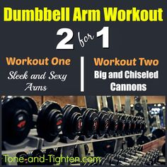 Dumbbell / Free Weight Arm Workout - Tone and Tighten Lean Body Workouts, Gym Workouts, Daily Workouts, Summer Workouts, Beginner Workouts, Free Weight Arm Workout, Arm Workouts Without Weights, Dumbbell Arm Workout, Exercises