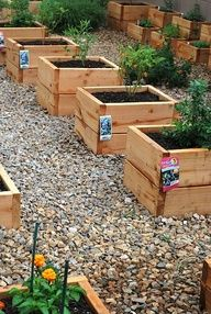 Mini raised beds - for the unused corners and spaces, especially the ones with existing landscape issues.  We recommend making the boxes sturdy enough for kids to sit on the side and work the soil themselves.