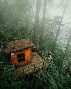 Forest hangouts in Malang, Indonesia. Photo by Share your stor Camping Sauvage, Haus Am See, Tree House Designs, Cabin In The Woods, Forest House, Forest Camp, The Places Youll Go, The Great Outdoors, Future House
