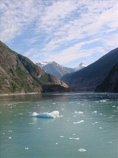 Tracy fjord, Alaska...on a recent cruise through the Inside Passage of Alaska.
