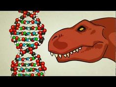 What is DNA and how does it work? So well done. Makes it simple to understand.
