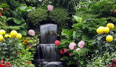 Aprenda a fazer um jardim sensorial